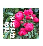 花のスタンプ 4(個別スタンプ:32)