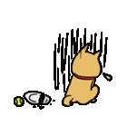 便利な犬たち!ハスキー、プードル、柴犬(個別スタンプ:21)