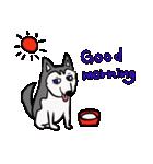 便利な犬たち!ハスキー、プードル、柴犬(個別スタンプ:22)