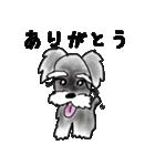 【カラフルさんの日常使えるスタンプ❷】(個別スタンプ:09)