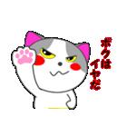 4匹の子猫 第4弾(個別スタンプ:03)