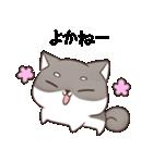 博多弁のしばいぬ2(個別スタンプ:01)