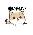 博多弁のしばいぬ2(個別スタンプ:02)