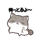 博多弁のしばいぬ2(個別スタンプ:03)