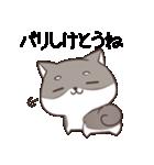 博多弁のしばいぬ2(個別スタンプ:07)