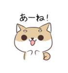 博多弁のしばいぬ2(個別スタンプ:10)