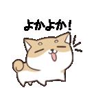 博多弁のしばいぬ2(個別スタンプ:12)