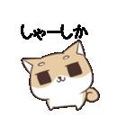 博多弁のしばいぬ2(個別スタンプ:20)