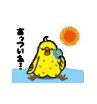 動く!トリ【ぴよちりの夏】(個別スタンプ:01)