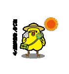 動く!トリ【ぴよちりの夏】(個別スタンプ:10)