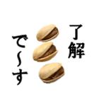 【実写】ピスタチオ(個別スタンプ:04)