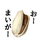 【実写】ピスタチオ(個別スタンプ:08)