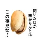 【実写】ピスタチオ(個別スタンプ:11)