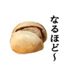【実写】ピスタチオ(個別スタンプ:12)