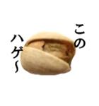 【実写】ピスタチオ(個別スタンプ:13)