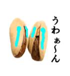 【実写】ピスタチオ(個別スタンプ:14)