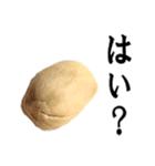 【実写】ピスタチオ(個別スタンプ:17)