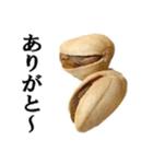 【実写】ピスタチオ(個別スタンプ:20)