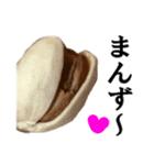 【実写】ピスタチオ(個別スタンプ:23)