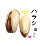 【実写】ピスタチオ(個別スタンプ:26)