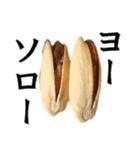 【実写】ピスタチオ(個別スタンプ:31)