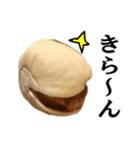 【実写】ピスタチオ(個別スタンプ:32)