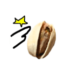 【実写】ピスタチオ(個別スタンプ:35)
