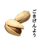【実写】ピスタチオ(個別スタンプ:38)