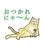 ネコをかぶったダンディ(個別スタンプ:13)