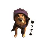 たぁちゃんスタンプ(個別スタンプ:01)