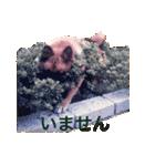 たぁちゃんスタンプ(個別スタンプ:18)