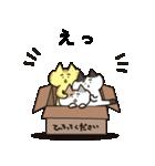 [まゆげ猫たちの日常]大人の仲良しゆる敬語