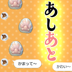 THE 歩く肉球【写真】