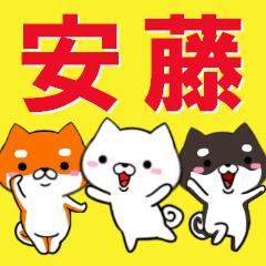超★安藤(あんどう・アンドウ)なイヌ