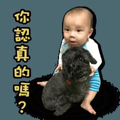 Baby bear family
