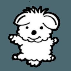 忠犬マルプーCOCOの楽しいスタンプ