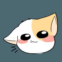 Cat Oh