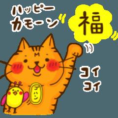 福猫 トラさん part1