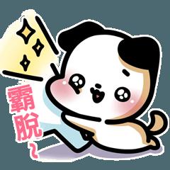 A.pa : A cute dog.