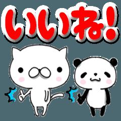 ぬこと子パンダ1