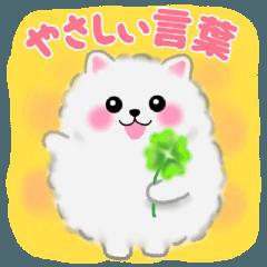 ポメラニアンぽちゃん☆やさしい言葉