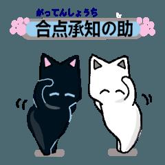 猫と肉球4