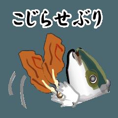 こじらせぶり(鰤16弾)