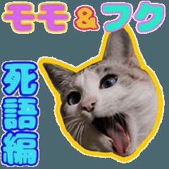 モモとフク(死語編)