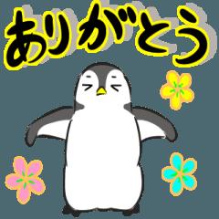 「動く」サラッとペンギン
