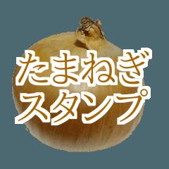 玉ねぎの写真スタンプ