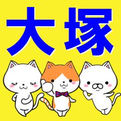 超★大塚(おおつか・オオツカ)なネコ