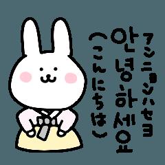 動く!白うさぎの使える韓国語
