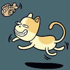 Weird Yellow Cat