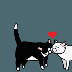 動く!白黒でぶ猫